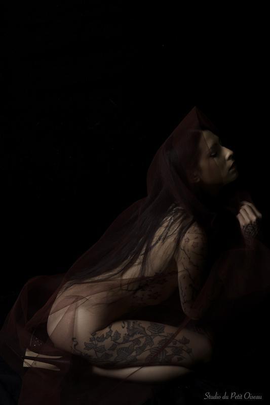 Nemesis :  Nemesia Noir, ns:Studio du petit oiseau, annuaire photo modele