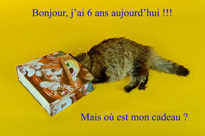 Joyeux Anniversaire Monsieur Gamin par by Bertrand de http://www.bybertrand.com