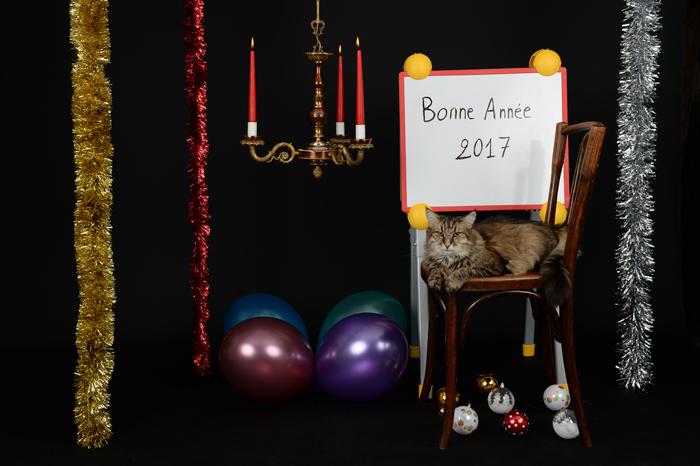 mes meilleurs voeux photographiques pour 2017 par by Bertrand de http://www.bybertrand.com